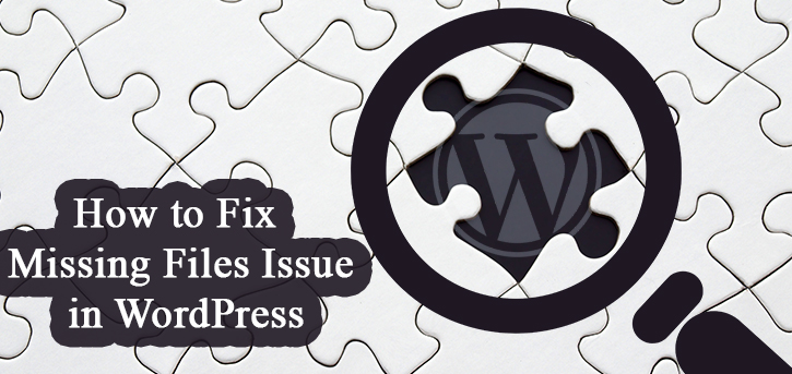 How to Fix Missing Files Issue in WordPress